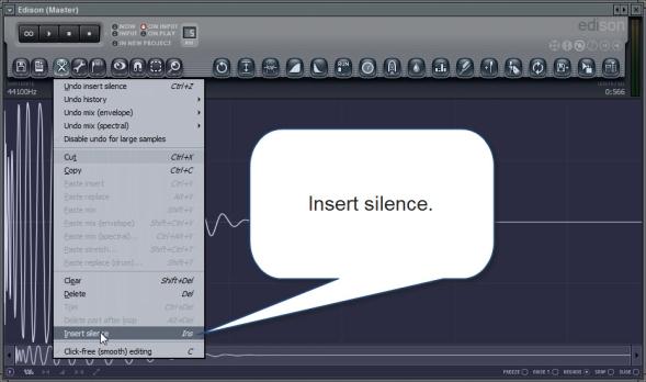 Insert Silence