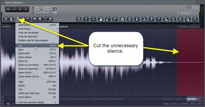 Cut the unnecessary silence using edison